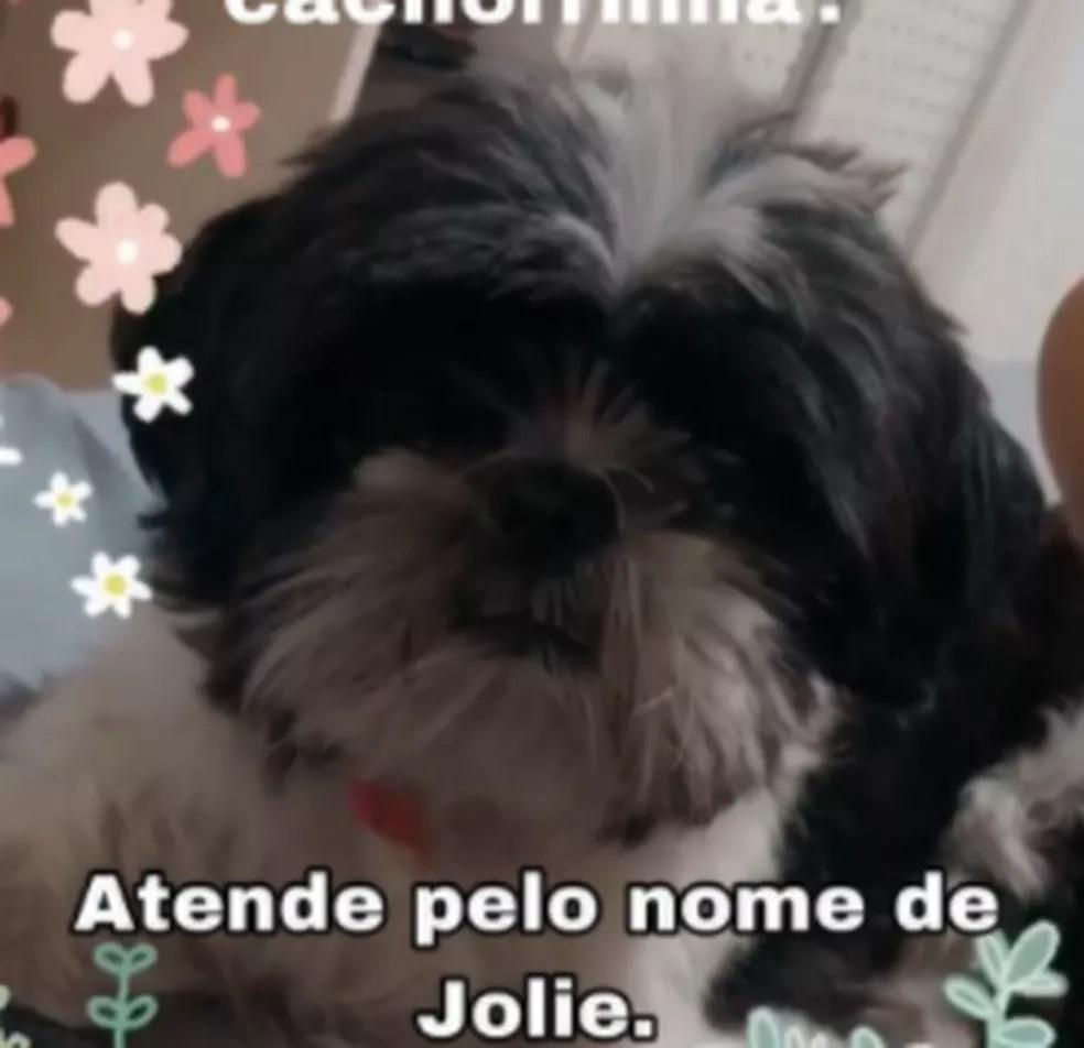 Jolie tem 3 anos de idade  — Foto: Arquivo pessoal