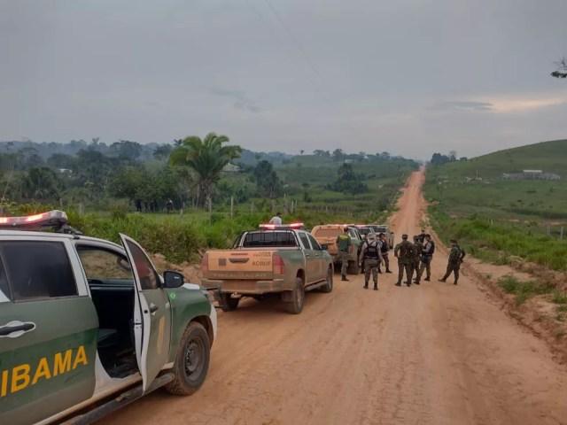 Operação Castanheira II foi contra contra crimes ambientais e transfronteiriços, — Foto: 17ª Brigada/Divulgação