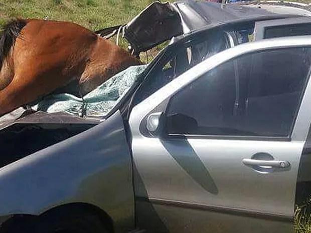 Vítimas não ficaram feridas após acidente, segundo a polícia (Foto: Arquivo pessoal)
