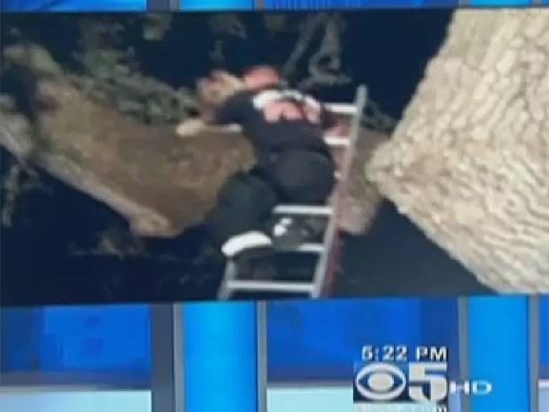 Caso ocorreu em Atherton, no estado da Califórnia. (Foto: Reprodução)