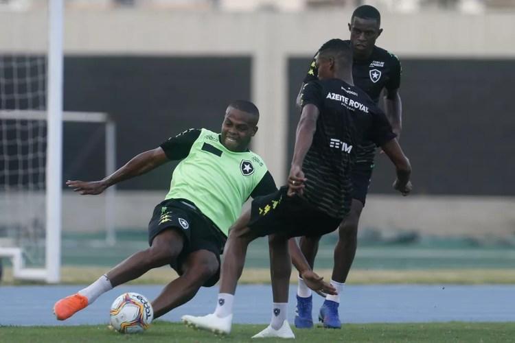 Vinicius Tanque é uma das possibilidades de centroavante para o Botafogo no início desta temporada — Foto: Vítor Silva/Botafogo