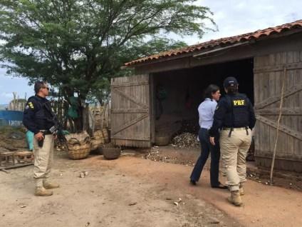 Casas de farinha ficam localizadas em Lajedo e Jupi — Foto: PRF/Divulgação