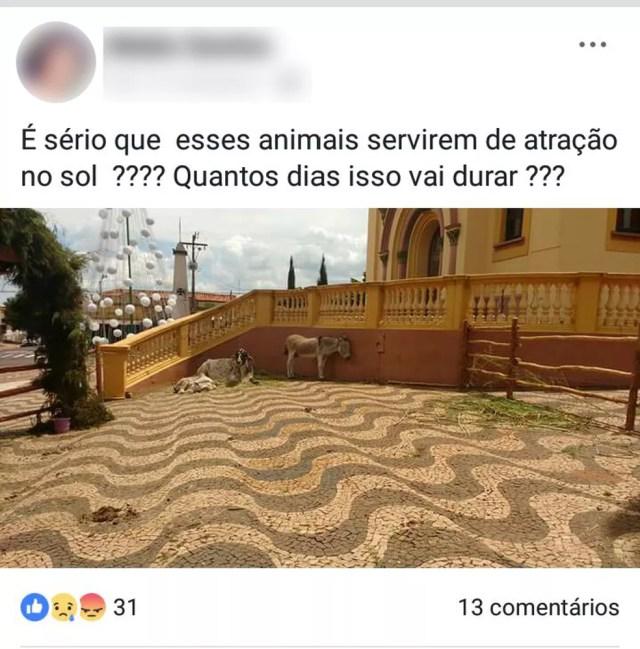 Uso dos animais vivos gerou críticas na internet dos moradores de Torrinha (Foto: Reprodução/ Facebook )