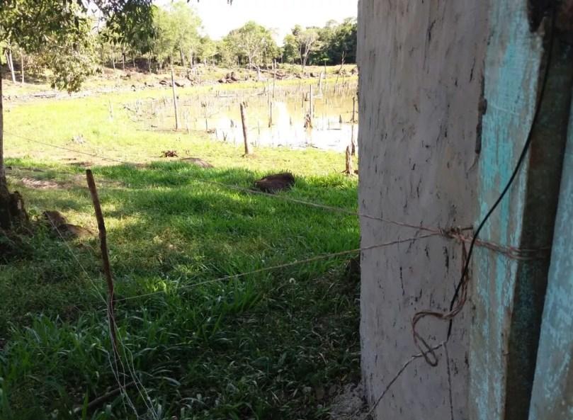 Descarga elétrica aconteceu em uma cerca eletrizada que evitada a entrada de animais na propriedade (Foto: Polícia Civil/Divulgação)