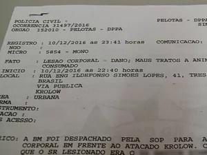 Boletim de ocorrência registrado sobre o caso  (Foto: Reprodução/RBS TV)