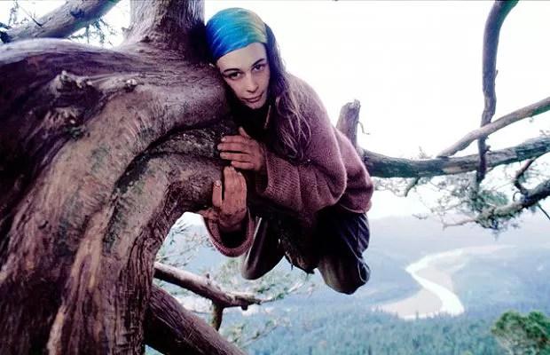 A ativista ambiental não se desgrudou da árvore até impedir sua derrubada (Foto: Reprodução/Julia Butterfly Hill)