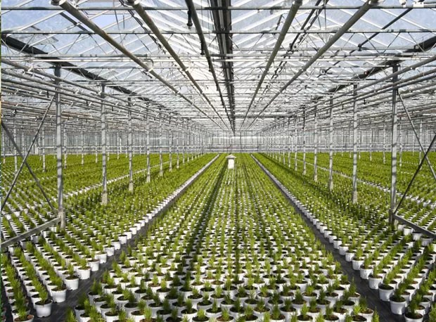 Imagem do ambiente interno do banco de sementes do parque