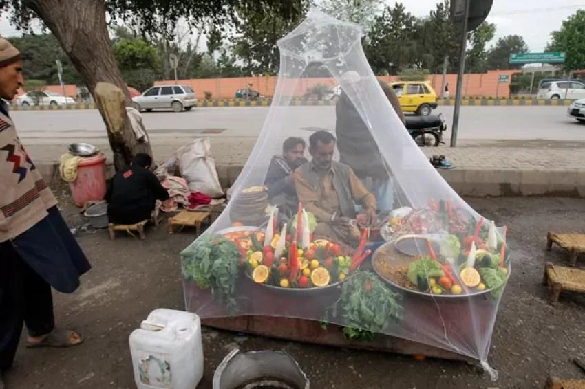 Vendedor de rua usa mosquiteiro para se proteger no Paquistão (Foto: Mohammad Sajjad/AP)