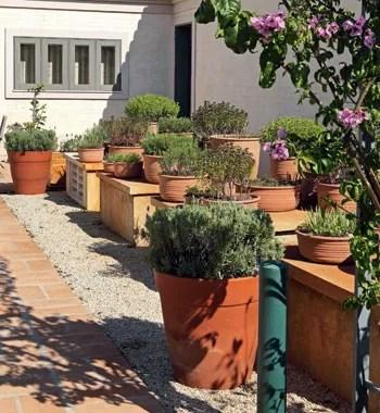 Horta caseira (Foto: Edu Castello e Renato Corradi)