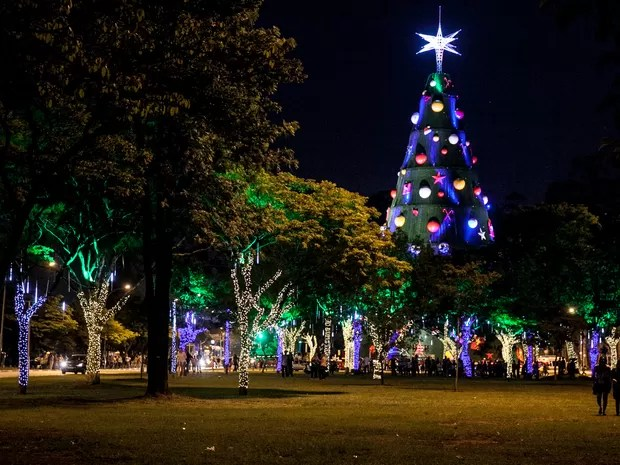 17/12 - Árvore de natal é vista em meio à árvores decoradas com luzes no parque do Ibirapuera, em São Paulo (Foto: Marcelo Brandt/G1)