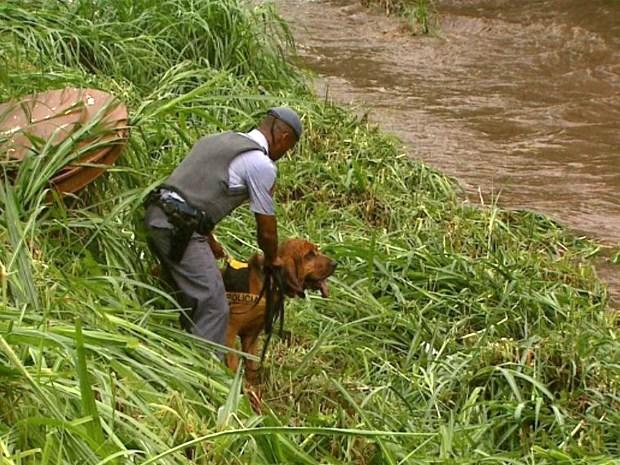Cão fareja pistas que podem levar ao paradeiro do menino Joaquim  (Foto: Reprodução/EPTV)