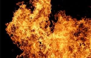 Homem foi detido nos EUA após queimar suas fezes atrás de uma delegacia (Foto: Wikimedia Commons/Fir0002)