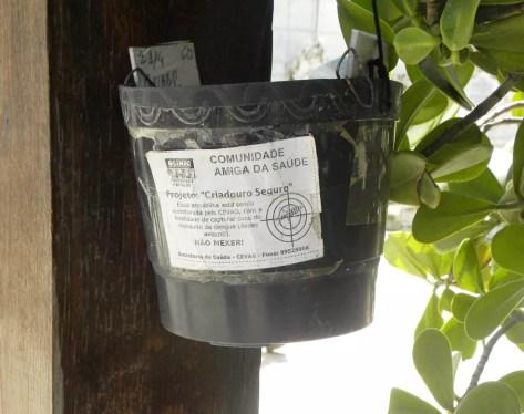 Armadilhas usadas em Olinda para destruir ovos do Aedes aegypti (Foto: Júlio César Melo/Secretaria de Saúde de Olinda/Divulgação)