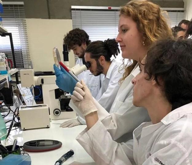 O projeto foi criado pela Equipe de Biologia Sintética da UFRGS que reúne 18 estudantes. — Foto: Arquivo pessoal