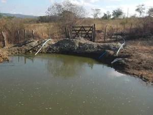 Água utilizada na irrigação era retirada de uma barragem (Foto: Divulgação/Polícia Federal)