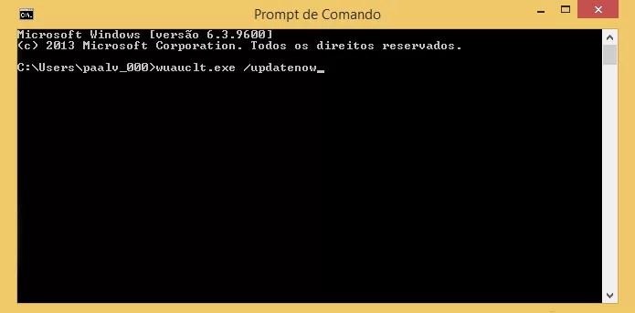 Digite o comando ainda sem dar Enter (Foto: Reprodução/Paulo Alves)