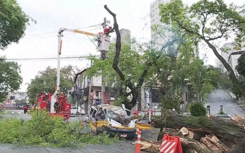 Equipe dos bombeiros e da prefeitura trabalharam na remoção de árvores e veículos após temporal em BH — Foto: Reprodução/TV Globo