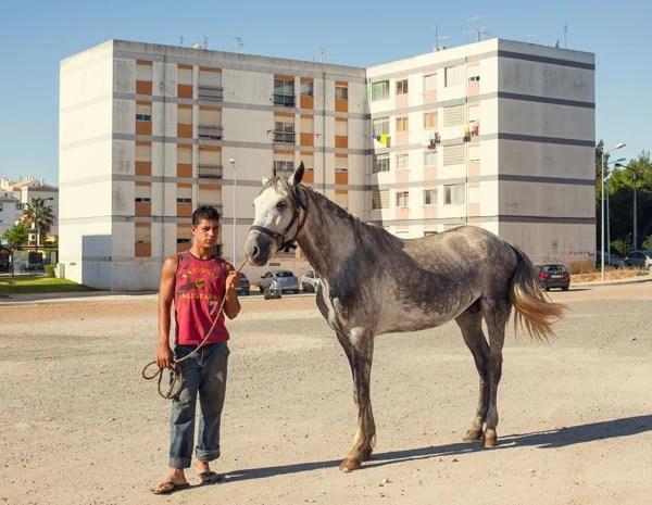 Cigano segura seu cavalo após limpá-lo, em Portimão, área urbana de Portugal. A presença de cavalos em áreas urbanas aponta que há diferentes níveis de desenvolvimento. (Foto: Carlos Spottorno)