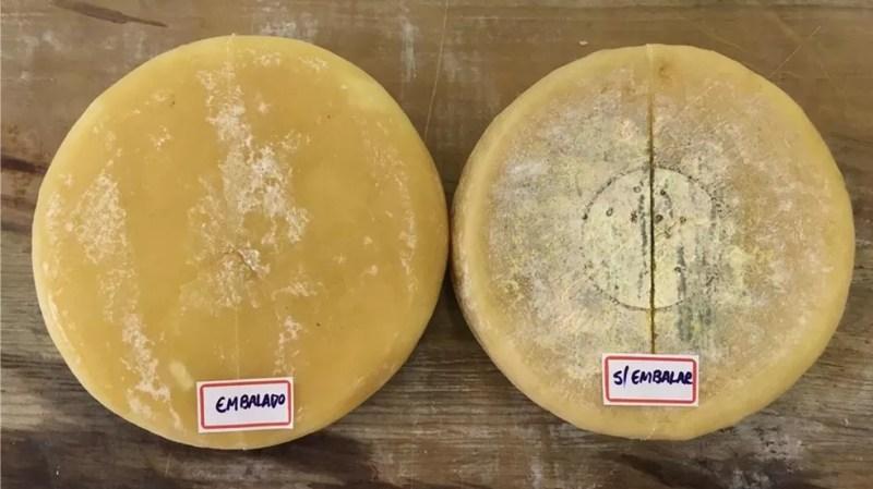 Pesquisas aprimoram queijo no Campo das Vertentes — Foto: Junio Cesar/Arquivo Pessoal