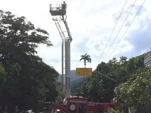 Bombeiros foram acionados rapidamente. Fogo não deixou vítimas. (Foto: Henrique Coelho/G1)