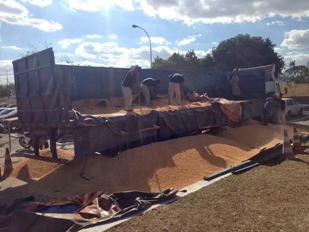 Policiais interceptam carga de milho e descobrem drogas escondidas no caminhão (Foto: Polícia Civil/Divulgação)