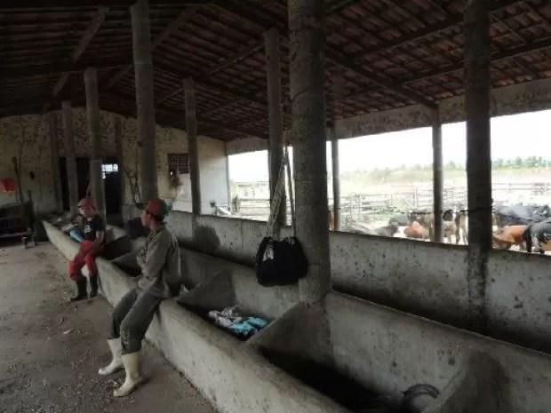 Trabalhadores eram mantidos em situações precárias, segundo fiscais (Foto: Ministério do Trabalho/Divulgação)