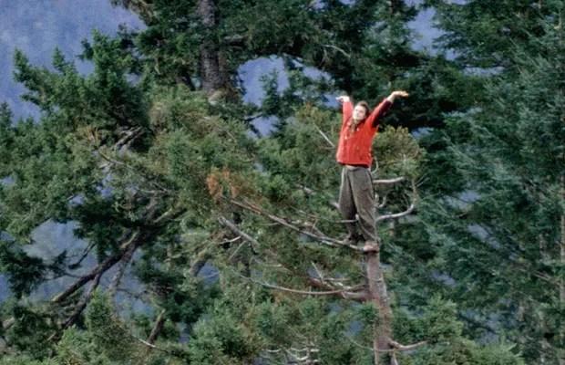 Ela também ficou ótima em escalar árvores (Foto: Reprodução/Julia Butterfly Hill)