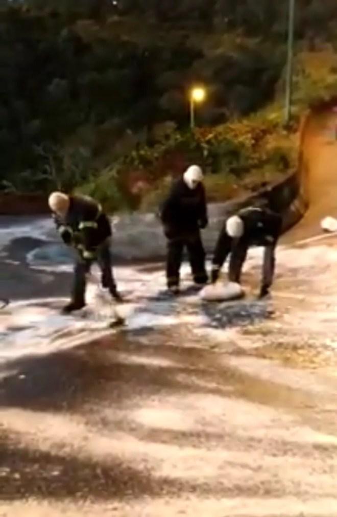 Policiais trabalham na limpeza da rodovia SC-350 — Foto: PMRv/Divulgação