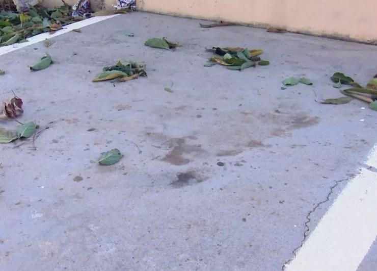 Marcas de sangue podem ser vistas no local onde ocorreu o ataque (Foto: Reprodução / TV TEM )
