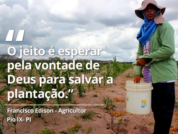Agricultor depende de carro-pipa para conseguir água e salvar plantação no Piauí (Foto: Catarina Costa/G1 Piauí )