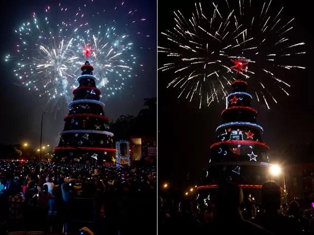 Árvore de Natal do Ibirapuera em 2011 (Foto: Bruno Poletti/Frame/AE)