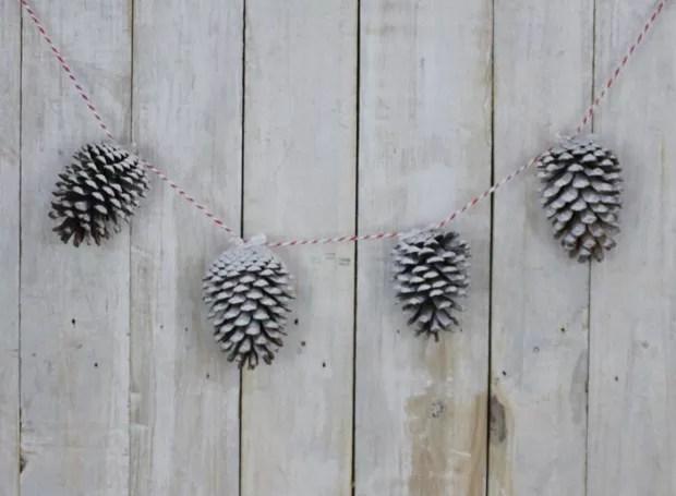 pinhas-brancas (Foto: Casa e Jardim)