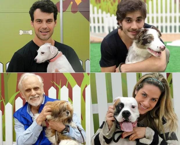 Finalistas do quadro Cachorrada VIP (Foto: Domingão do Faustão / TV Globo)
