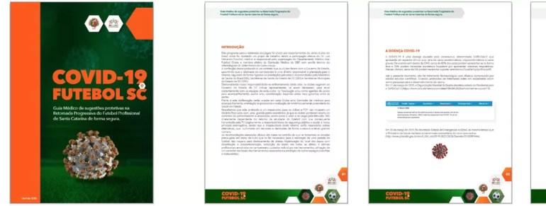 Protocolo catarinense faz série de observações para treinos e jogos, prevendo até dois ônibus para viagens dentro do estado — Foto: Reprodução