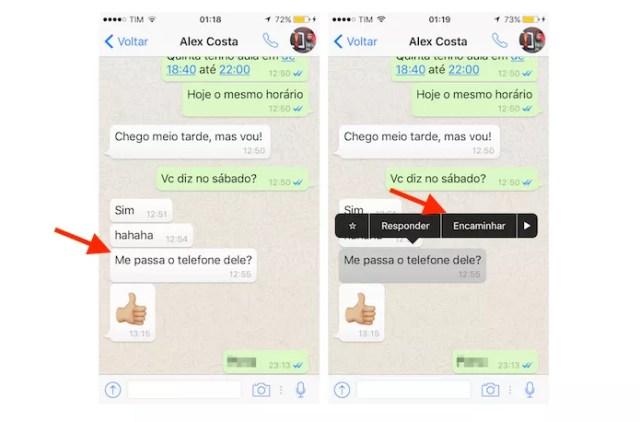 Função para encaminhamento de mensagens do WhatsApp para iPhone (Foto: Reprodução/Marvin Costa)