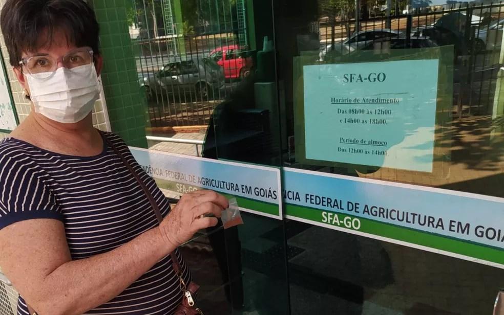 Maria José Tolentino entrega sementes que recebeu à Superintendência Federal de Agricultura em Goiás Goiânia — Foto: Reprodução/Arquivo pessoal