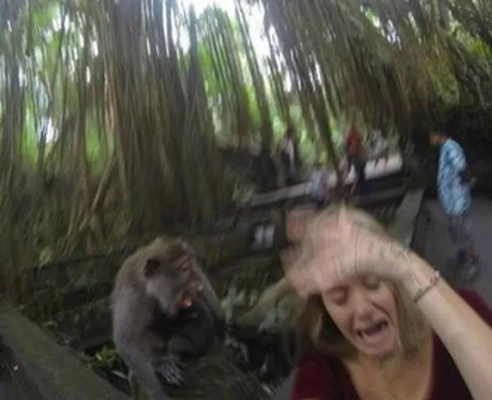Mulher ficou em pânico ao perceber que o macaco não era amigável  (Foto: Reprodução/Reddit/ThatGuy1331)