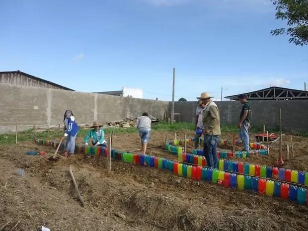 Projeto fomenta criação de Hortas Comunitárias em Itapuã (Foto: Assessoria/Divulgação)