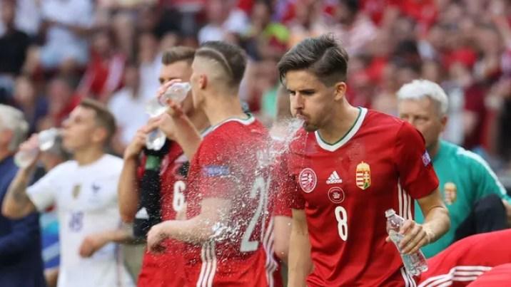 Nagy cospe a água - Hungria x França
