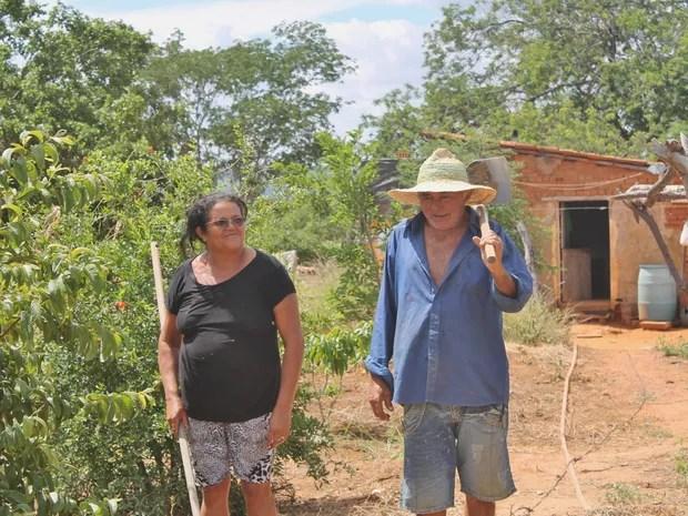 Manoel e Maria Gercília estão conseguindo plantar mesmo com a Seca (Foto: Juliane Peixinho/ G1)