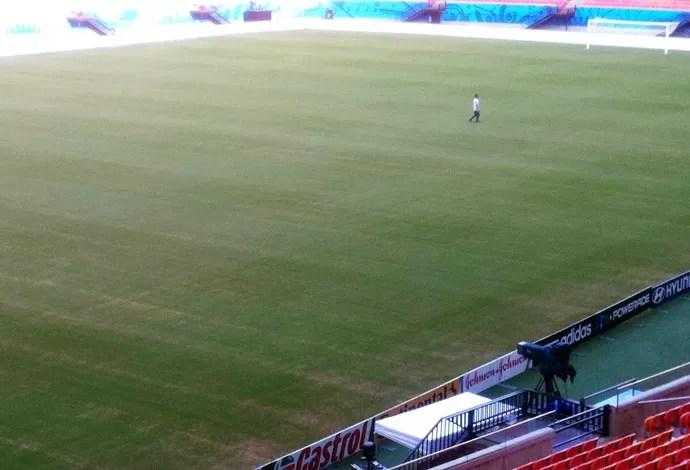 manaus gramado copa do mundo (Foto: AFP)