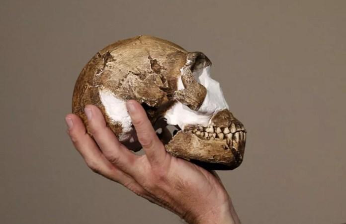 O professor Lee Berger segura a réplica de um crânio do 'Homo naledi', nova espécie de hominídeo descoberta na África do Sul  (Foto: Siphiwe Sibeko/Reuters)