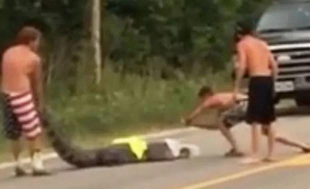 Três jovens se arriscaram ao tentar tirar um aligátor de estrada no estado da Luisiana (Foto: Reprodução/YouTube/Neyfe Li)