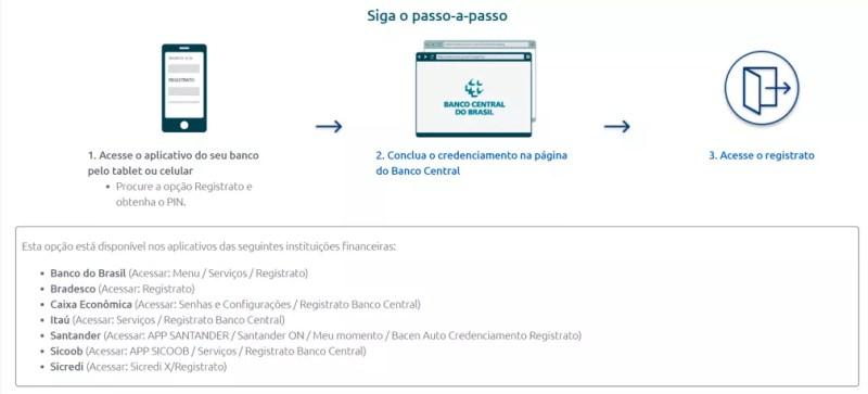 Cadastro pelo celular — Foto: Reprodução/Banco Central