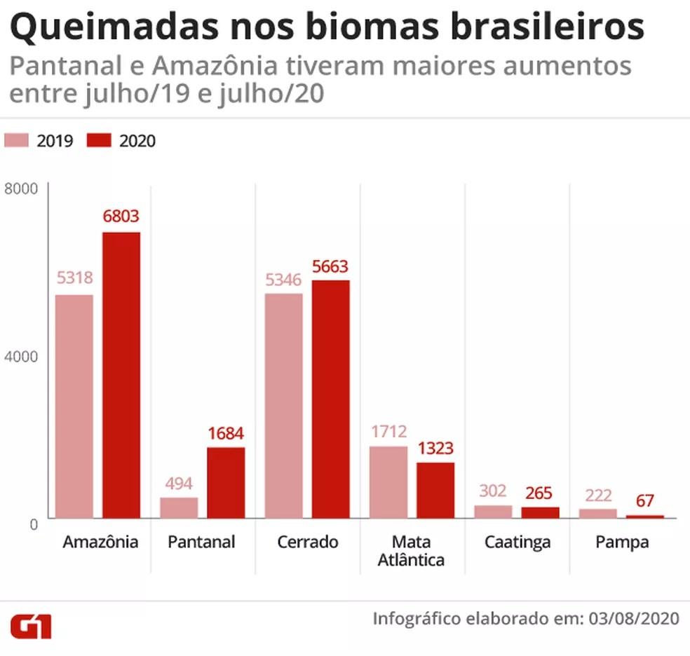 Gráfico mostra comparação das queimadas nos biomas brasileiros entre julho de 2019 e julho de 2020 — Foto: Juliane Monteiro/G1