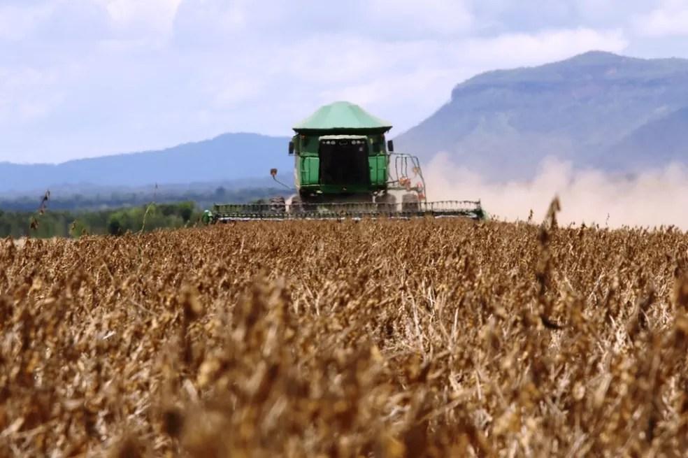 Agronegócio deverá levar a alta do PIB no primeiro trimestre (Foto: Seagro/Divulgação)