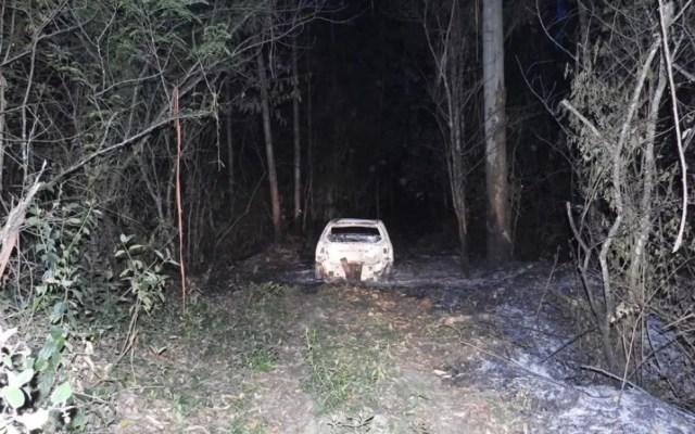 Carro  queimado estava em área de mata  (Foto: Sul in foco/Divulgação)
