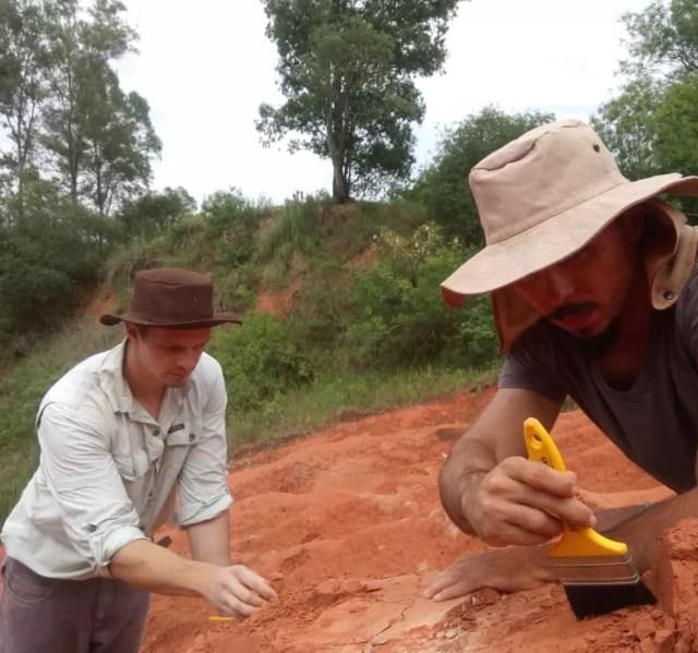 Fóssil foi encontrado durante expedição em Agudo, no ano passado — Foto: Janaína Dillmann