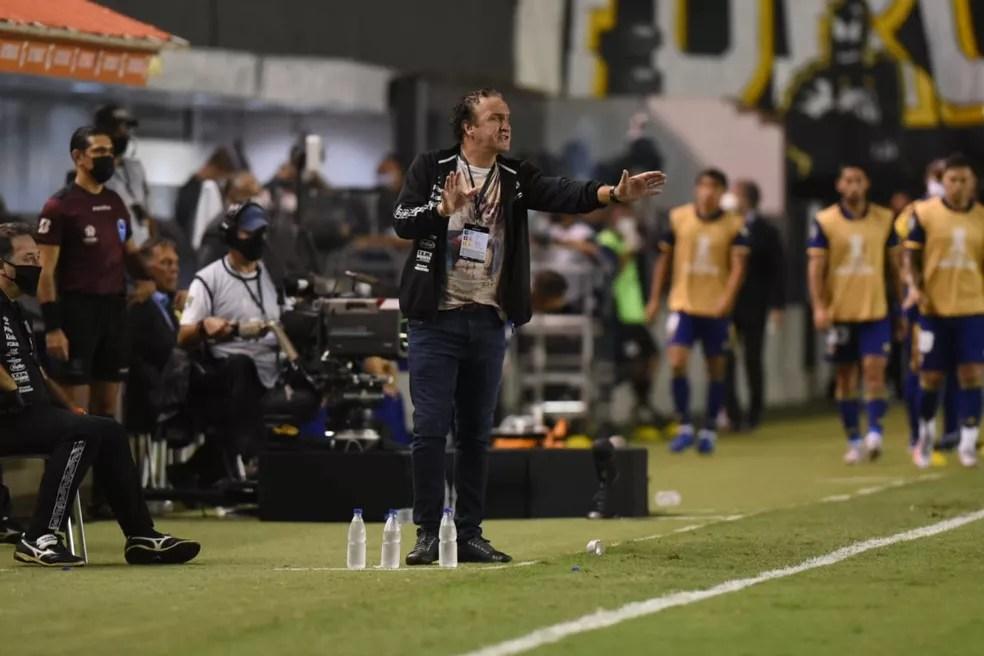 Cuca comandou, com maestria, o Santos rumo à final da Libertadores — Foto: Santos FC / divulgação