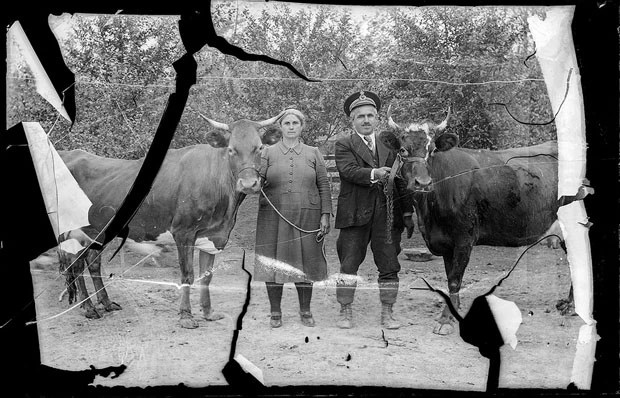 Fotografia de casal ao lado de seus animais (Foto: Costică Acsinte Archive)